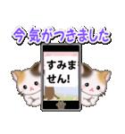 春の三毛猫ツインズ(個別スタンプ:30)
