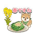 よちよち豆柴 おいしい春(個別スタンプ:7)