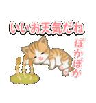 ちび猫 おいしい春(個別スタンプ:5)