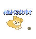 ちびもふ秋田犬 毎日使うスタンプ(個別スタンプ:1)