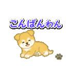 ちびもふ秋田犬 毎日使うスタンプ(個別スタンプ:4)