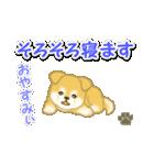ちびもふ秋田犬 毎日使うスタンプ(個別スタンプ:6)