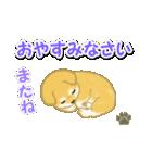 ちびもふ秋田犬 毎日使うスタンプ(個別スタンプ:7)