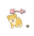 ちびもふ秋田犬 毎日使うスタンプ(個別スタンプ:9)