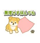 ちびもふ秋田犬 毎日使うスタンプ(個別スタンプ:15)