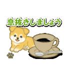 ちびもふ秋田犬 毎日使うスタンプ(個別スタンプ:16)