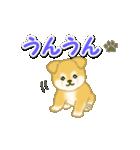 ちびもふ秋田犬 毎日使うスタンプ(個別スタンプ:23)