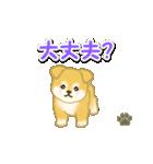ちびもふ秋田犬 毎日使うスタンプ(個別スタンプ:26)