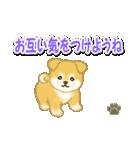 ちびもふ秋田犬 毎日使うスタンプ(個別スタンプ:28)