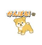 ちびもふ秋田犬 毎日使うスタンプ(個別スタンプ:31)
