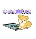 ちびもふ秋田犬 毎日使うスタンプ(個別スタンプ:35)