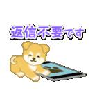 ちびもふ秋田犬 毎日使うスタンプ(個別スタンプ:36)