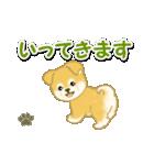 ちびもふ秋田犬 毎日使うスタンプ(個別スタンプ:37)