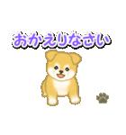 ちびもふ秋田犬 毎日使うスタンプ(個別スタンプ:40)
