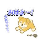 ちびもふ秋田犬【カスタム版】(個別スタンプ:2)