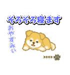 ちびもふ秋田犬【カスタム版】(個別スタンプ:6)