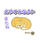 ちびもふ秋田犬【カスタム版】(個別スタンプ:7)