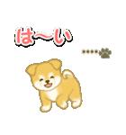ちびもふ秋田犬【カスタム版】(個別スタンプ:9)