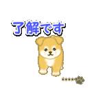 ちびもふ秋田犬【カスタム版】(個別スタンプ:10)