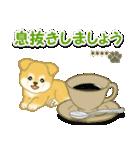 ちびもふ秋田犬【カスタム版】(個別スタンプ:16)