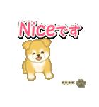 ちびもふ秋田犬【カスタム版】(個別スタンプ:22)