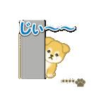 ちびもふ秋田犬【カスタム版】(個別スタンプ:24)
