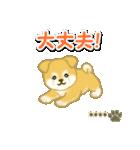 ちびもふ秋田犬【カスタム版】(個別スタンプ:27)