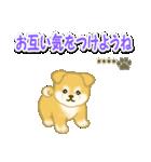 ちびもふ秋田犬【カスタム版】(個別スタンプ:28)