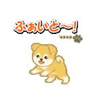 ちびもふ秋田犬【カスタム版】(個別スタンプ:29)
