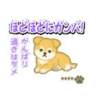 ちびもふ秋田犬【カスタム版】(個別スタンプ:32)
