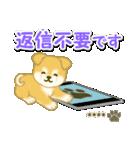 ちびもふ秋田犬【カスタム版】(個別スタンプ:36)