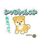 ちびもふ秋田犬【カスタム版】(個別スタンプ:38)
