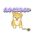 ちびもふ秋田犬【カスタム版】(個別スタンプ:40)