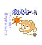 赤ちゃん豆柴 【カスタム版】(個別スタンプ:2)