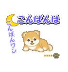 赤ちゃん豆柴 【カスタム版】(個別スタンプ:4)