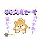 赤ちゃん豆柴 【カスタム版】(個別スタンプ:5)