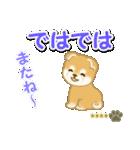 赤ちゃん豆柴 【カスタム版】(個別スタンプ:7)