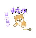 赤ちゃん豆柴 【カスタム版】(個別スタンプ:8)