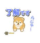 赤ちゃん豆柴 【カスタム版】(個別スタンプ:10)
