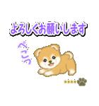 赤ちゃん豆柴 【カスタム版】(個別スタンプ:19)