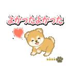 赤ちゃん豆柴 【カスタム版】(個別スタンプ:20)