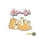 赤ちゃん豆柴 【カスタム版】(個別スタンプ:21)