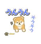 赤ちゃん豆柴 【カスタム版】(個別スタンプ:25)
