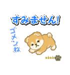 赤ちゃん豆柴 【カスタム版】(個別スタンプ:27)
