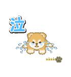赤ちゃん豆柴 【カスタム版】(個別スタンプ:28)