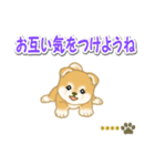 赤ちゃん豆柴 【カスタム版】(個別スタンプ:31)