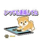赤ちゃん豆柴 【カスタム版】(個別スタンプ:32)