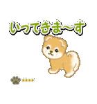 赤ちゃん豆柴 【カスタム版】(個別スタンプ:37)