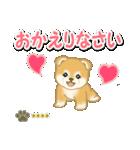 赤ちゃん豆柴 【カスタム版】(個別スタンプ:40)