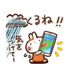 夏・天気✨【白うさぎ&時々インコ】(個別スタンプ:25)